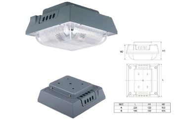 Dossel LED light